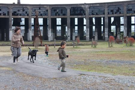 犬も電車ごっこ
