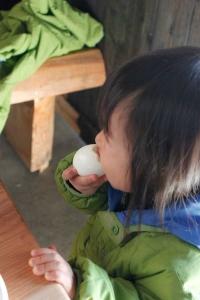 卵を食べてます